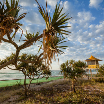 BEACH-A Beach & Pandanus View looking South from dunes