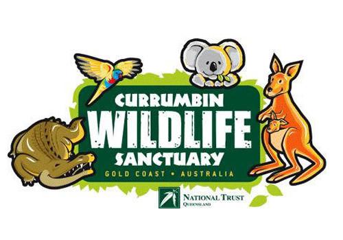 currumbin wildlife